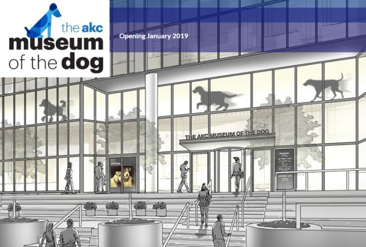 museo del perro