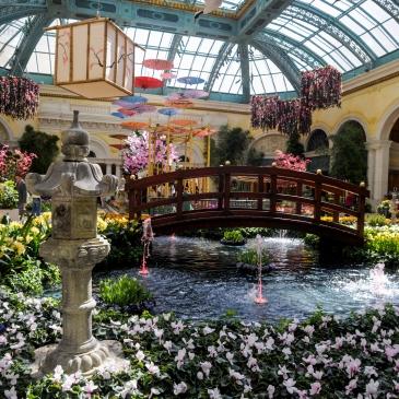 El jardín del Bellagio será sede de la exposición Dolce Vita (Crédito Las Vegas News Bureau).